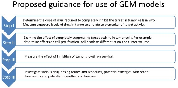 Infographic about the use of GEM models.