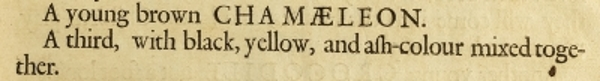 Snippet from Nehemiah Grew's Musaeum Regalis Societatis