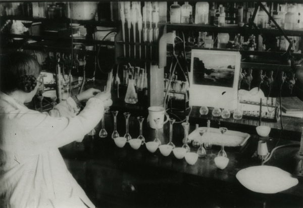 Elsie Widdowson working in the laboratory