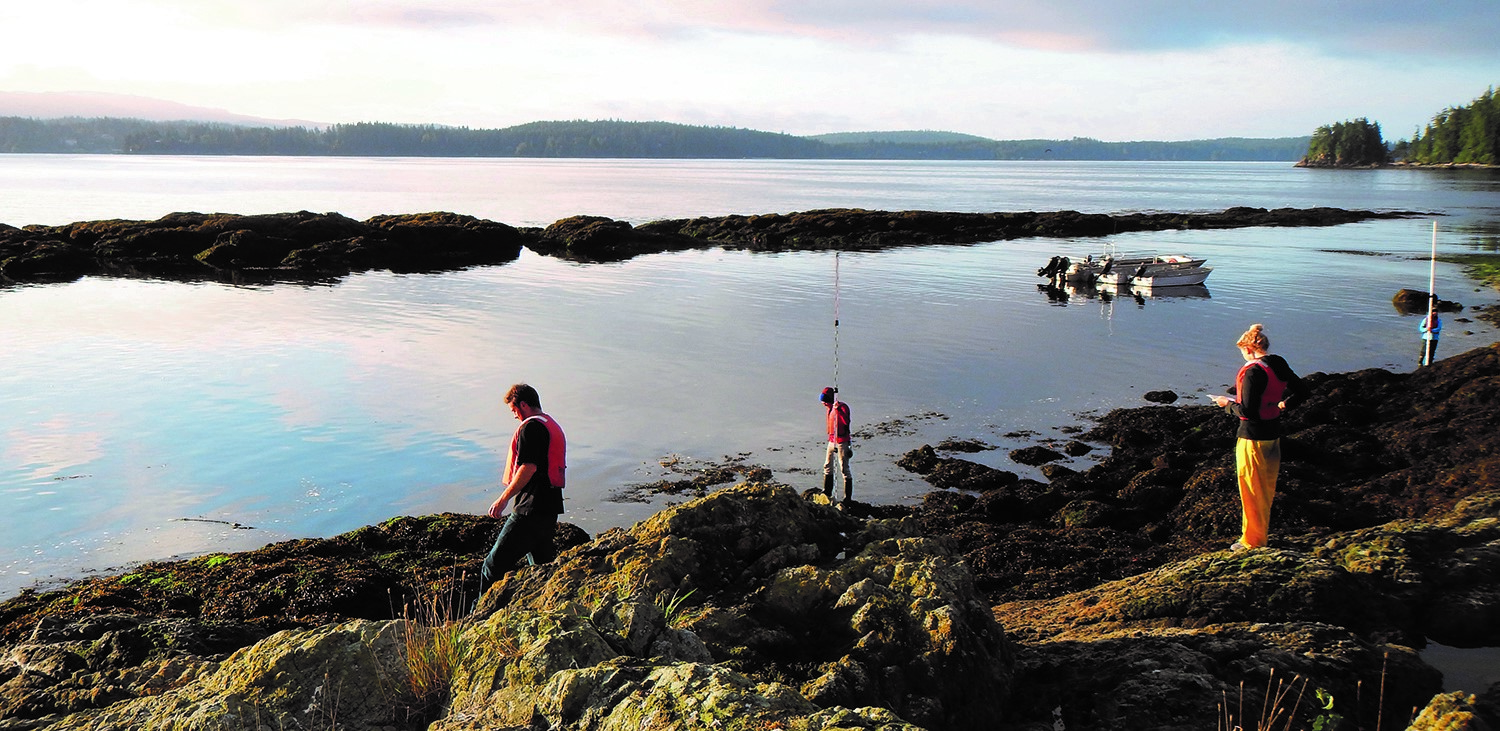 Researchers at the Bamfield Marine Sciences Centre