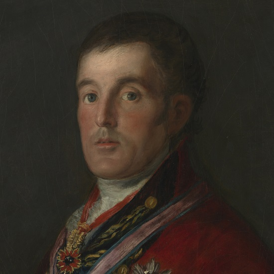 Wellington portrait - Goya