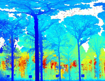 Terrestrial laser scanner range image recorded at Alice Holt, Hampshire