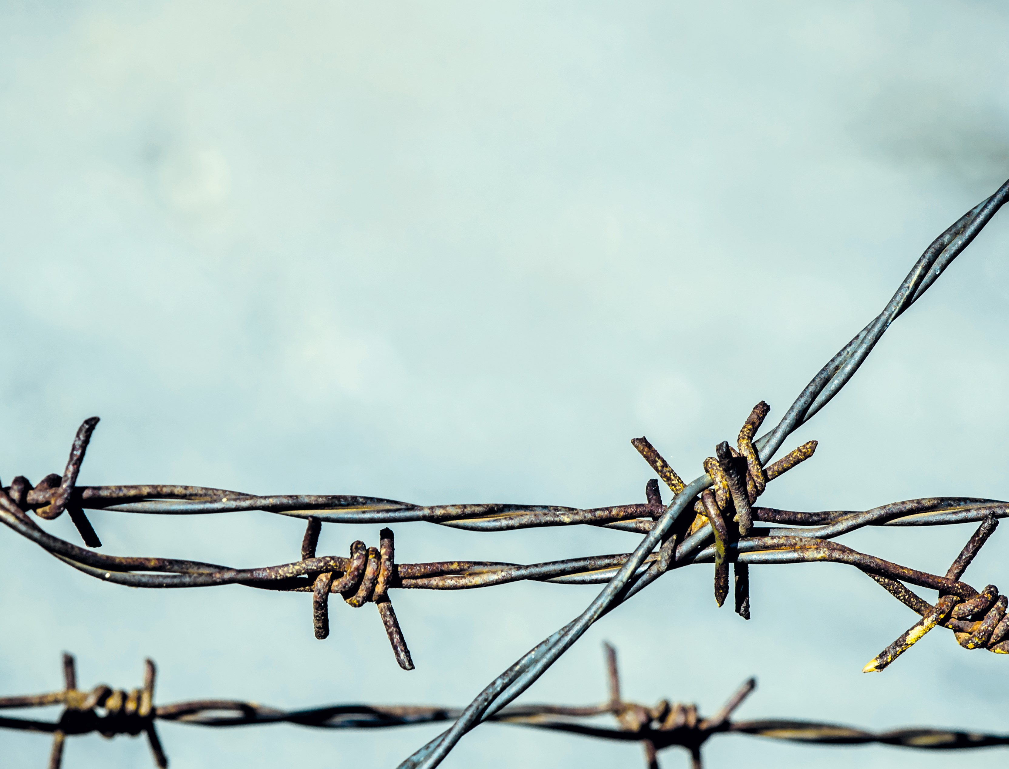 Barbed wire on a cloudy background