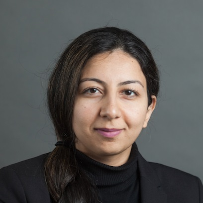 Dr Narges Ahmadi