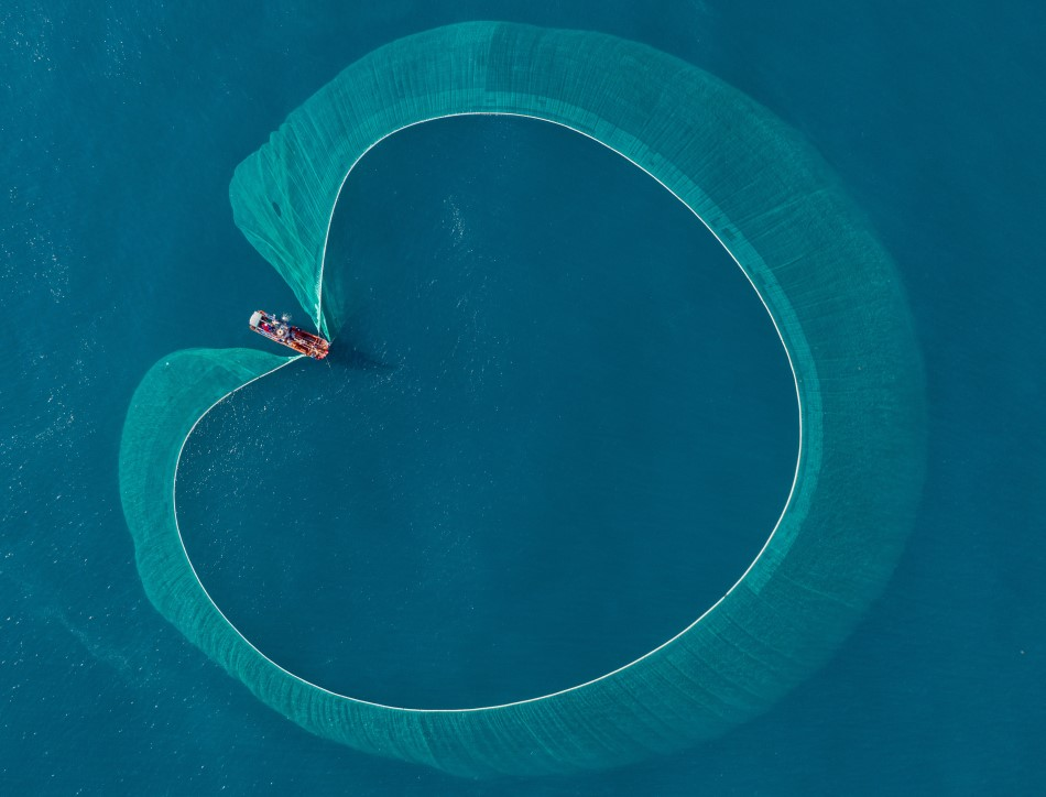 An aerial view of a fishing boat on blue water, with the net cast in a circle.