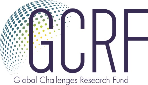 Global Challenges Research Fund | Royal Society