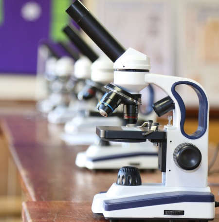 Image of microscopes