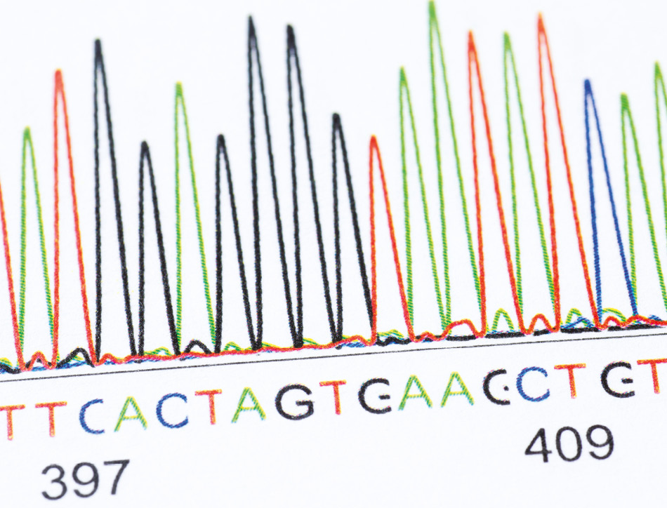 DNA sequencing results