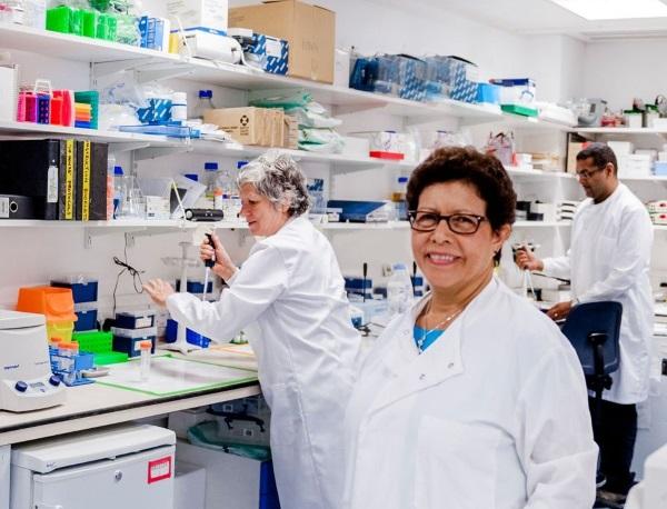 Best Practice - Diversity Case Studies | Royal Society