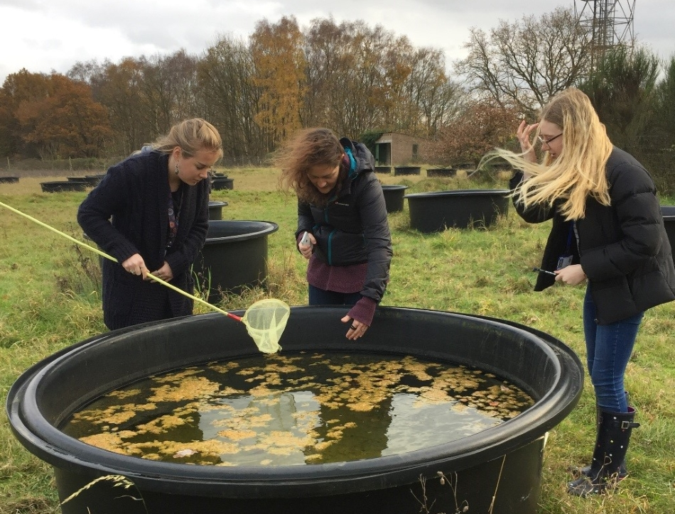 Taking samples from a mesocosm. Credit: Charters School