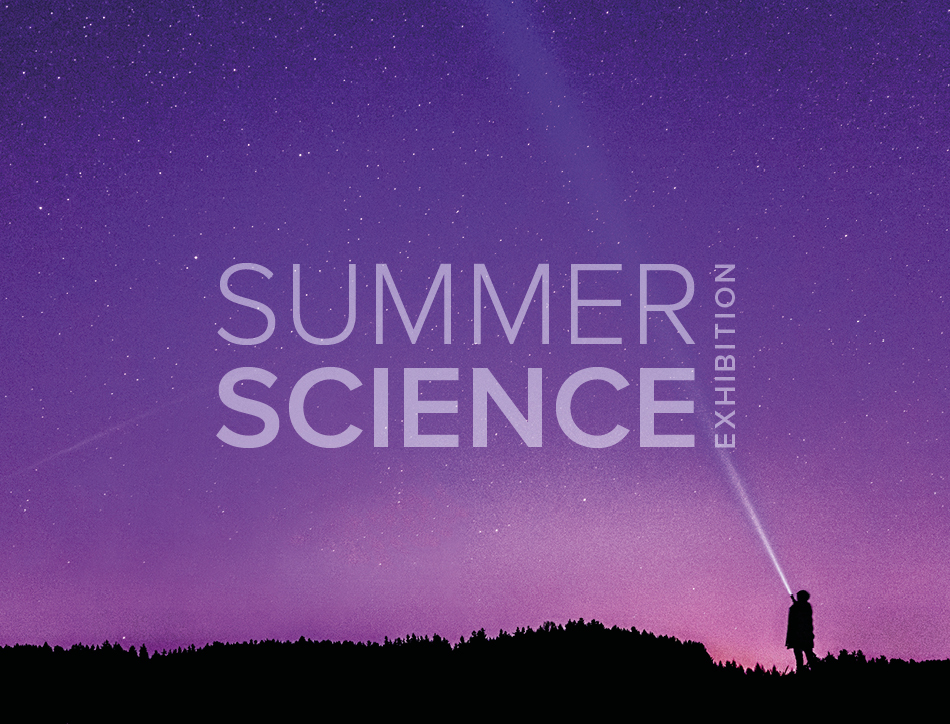 Summer Science Exhibition: silhouette of a person shining a torch up into a purple night sky