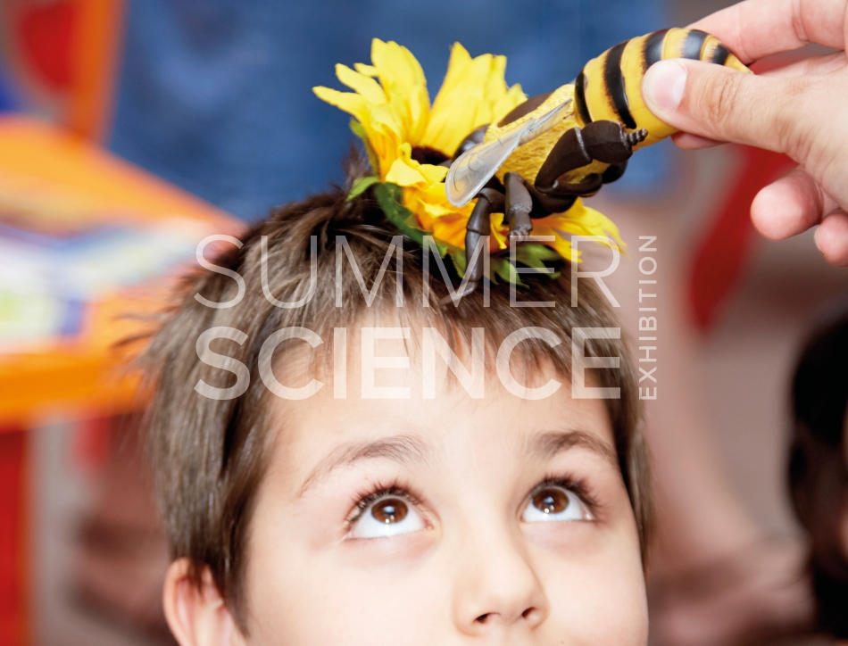 Summer Science Exhibition: a child with a toy flower on their forehead next to which an adult is holding a large toy bee