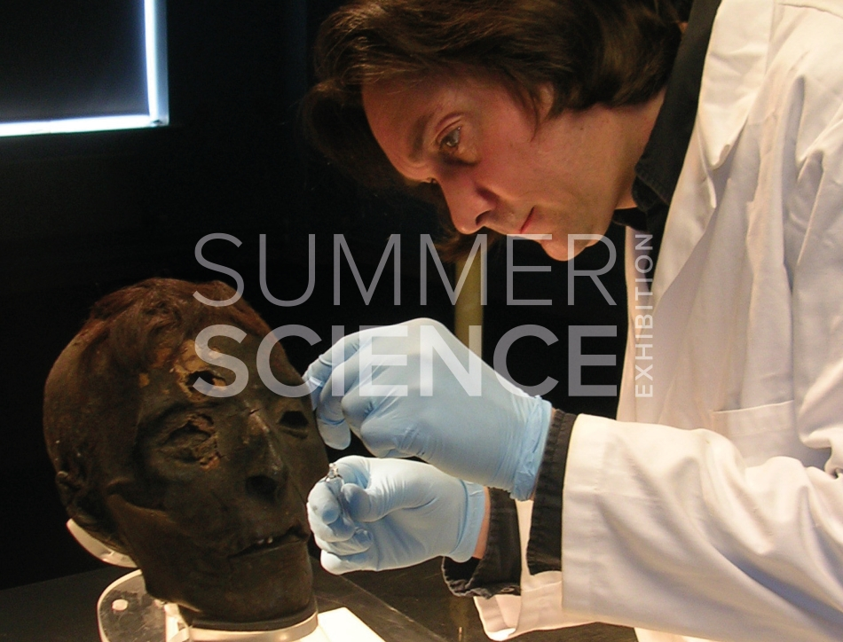 Summer Science Exhibition: a scientist carefully taking a sample from the surface of a mummified skull