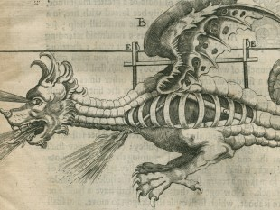 Illustration of dragon firework (detail) from John Babington's 'Pyrotechnia' (1635)