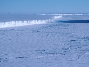 Edge of the Ice shelf being fed by the West Antarctic Ice Sheet