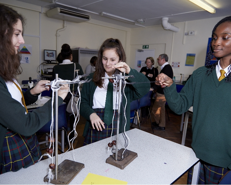 Pupils explore the science of conkers