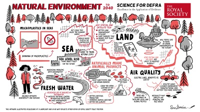 Natural Environment scriberia meeting illustration