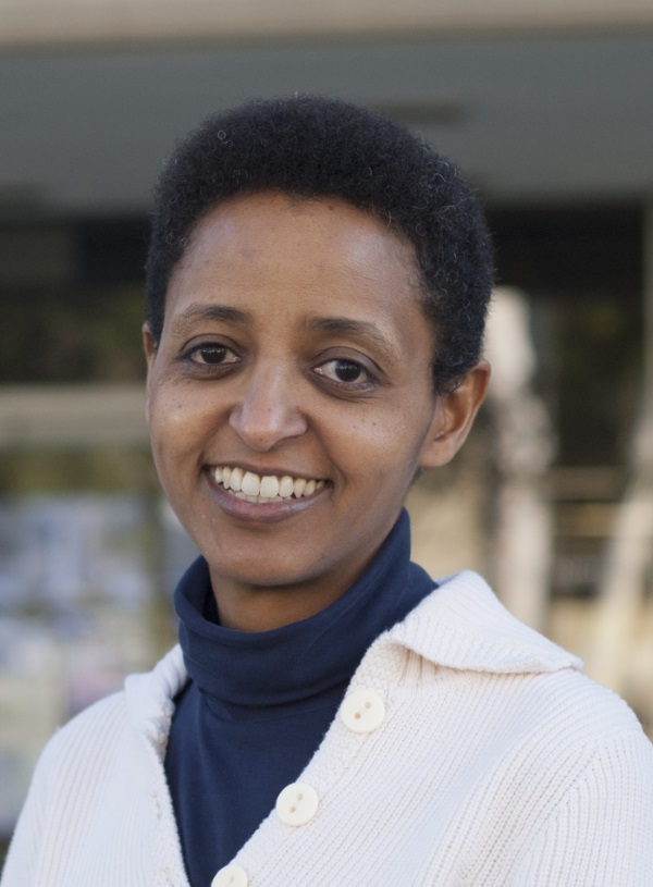 Professor Sossina Haile, Northwestern University, USA