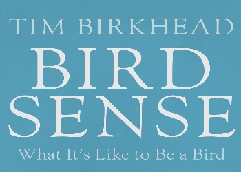 Bird Sense by Tim Birkhead