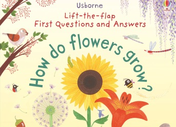 First Lift-the-flap Questions and Answers: How do flowers grow?