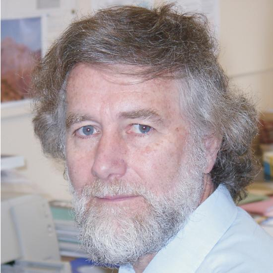 Professor Michael Bickle