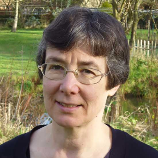 Professor Frances Kirwan