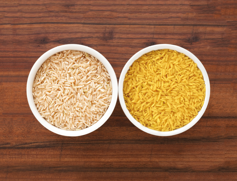 Golden rice. Copyright: FotografiaBasica